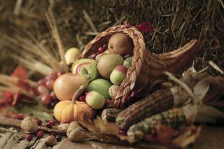 Thanksgiving1MP900422714